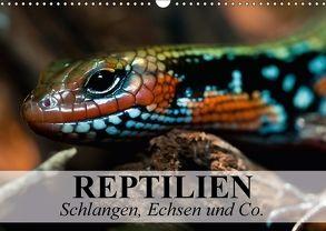 Reptilien Schlangen, Echsen und Co. (Wandkalender 2018 DIN A3 quer) von Stanzer,  Elisabeth
