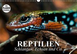 Reptilien. Schlangen, Echsen und Co. (Wandkalender 2019 DIN A3 quer) von Stanzer,  Elisabeth