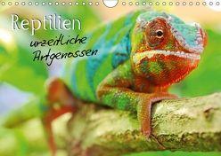 Reptilien urzeitliche Artgenossen (Wandkalender 2018 DIN A4 quer) von Mosert,  Stefan