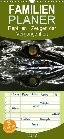 Reptilien – Zeugen der Vergangenheit – Familienplaner hoch (Wandkalender 2019 , 21 cm x 45 cm, hoch) von Herzog,  Michael
