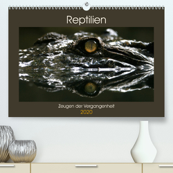 Reptilien – Zeugen der Vergangenheit (Premium, hochwertiger DIN A2 Wandkalender 2020, Kunstdruck in Hochglanz) von Herzog,  Michael
