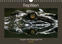 Reptilien – Zeugen der Vergangenheit (Wandkalender 2018 DIN A4 quer) von Herzog,  Michael
