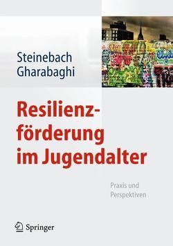 Resilienzförderung im Jugendalter von Gharabaghi,  Kiaras, Steinebach,  Christoph