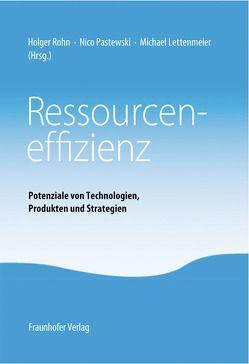 Ressourceneffizienz. von Lettenmeier,  Michael, Pastewski,  Nico, Rohn,  Holger