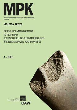 Ressourcenmanagement im Pfahlbau. Technologie und Rohmaterial der Steinbeilklingen vom Mondsee von Friesinger,  Herwig, Hack,  Silvia, Reiter,  Violetta
