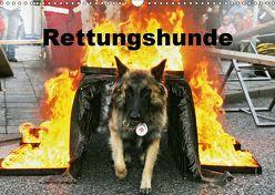 Rettungshunde (Wandkalender 2019 DIN A3 quer) von Mirlieb,  Ulf