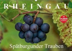 Rheingau – Spätburgunder Trauben (Wandkalender 2018 DIN A2 quer) von Meyer,  Dieter