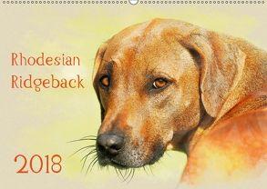 Rhodesian Ridgeback 2018 (Wandkalender 2018 DIN A2 quer) von Redecker,  Andrea