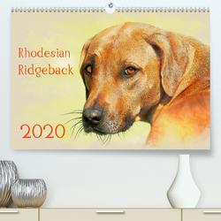 Rhodesian Ridgeback 2020 (Premium, hochwertiger DIN A2 Wandkalender 2020, Kunstdruck in Hochglanz) von Redecker,  Andrea