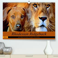 Rhodesian Ridgeback der Hund mit dem Tropfen Löwenblut (Premium, hochwertiger DIN A2 Wandkalender 2021, Kunstdruck in Hochglanz) von Behrens,  Dagmar