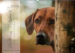 Rhodesian Ridgeback – Herzen auf vier Pfoten (Wandkalender 2019 DIN A2 quer) von Mischnik,  Sabrina