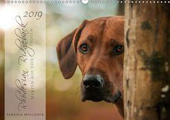 Rhodesian Ridgeback – Herzen auf vier Pfoten (Wandkalender 2019 DIN A3 quer) von Mischnik,  Sabrina