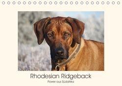 Rhodesian Ridgeback Power aus Südafrika (Tischkalender 2018 DIN A5 quer) von Bodsch,  Birgit