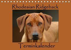 Rhodesian Ridgeback Terminkalender (Tischkalender 2019 DIN A5 quer) von van Wyk - www.germanpix.net,  Anke