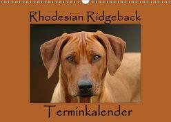 Rhodesian Ridgeback Terminkalender (Wandkalender 2019 DIN A3 quer) von van Wyk - www.germanpix.net,  Anke