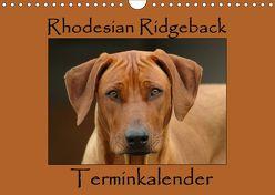 Rhodesian Ridgeback Terminkalender (Wandkalender 2019 DIN A4 quer) von van Wyk - www.germanpix.net,  Anke