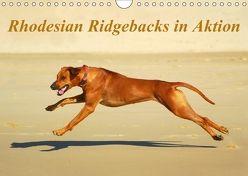 Rhodesian Ridgebacks in AktionAT-Version (Wandkalender 2018 DIN A4 quer) von van Wyk - www.germanpix.net,  Anke
