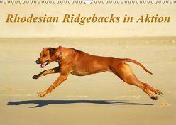 Rhodesian Ridgebacks in AktionAT-Version (Wandkalender 2019 DIN A3 quer) von van Wyk - www.germanpix.net,  Anke