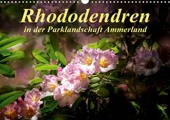 Rhododendren in der Parklandschaft Ammerland / Geburtstagskalender (Wandkalender 2021 DIN A3 quer) von Roder,  Peter