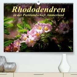 Rhododendren in der Parklandschaft Ammerland (Premium, hochwertiger DIN A2 Wandkalender 2021, Kunstdruck in Hochglanz) von N.,  N.