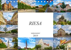 Riesa Impressionen (Tischkalender 2019 DIN A5 quer) von Meutzner,  Dirk