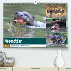 Riesenotter – Flusswölfe im Pantanal (Premium, hochwertiger DIN A2 Wandkalender 2020, Kunstdruck in Hochglanz) von und Yvonne Herzog,  Michael
