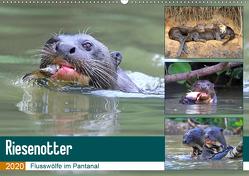 Riesenotter – Flusswölfe im Pantanal (Wandkalender 2020 DIN A2 quer) von und Yvonne Herzog,  Michael