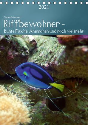 Riffbewohner – Bunte Fische, Anemonen und noch viel mehrAT-Version (Tischkalender 2021 DIN A5 hoch) von Schumann,  Bianca