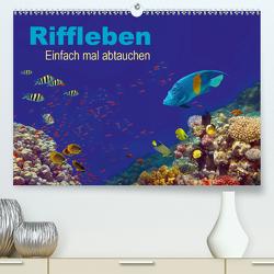 Riffleben – Einfach mal abtauchen (Premium, hochwertiger DIN A2 Wandkalender 2021, Kunstdruck in Hochglanz) von Melz,  Tina