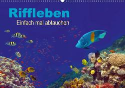 Riffleben – Einfach mal abtauchen (Wandkalender 2021 DIN A2 quer) von Melz,  Tina