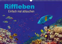 Riffleben – Einfach mal abtauchen (Wandkalender 2021 DIN A3 quer) von Melz,  Tina