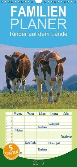 Rinder auf dem Lande – Familienplaner hoch (Wandkalender 2019 , 21 cm x 45 cm, hoch) von Geduldig,  Bildagentur