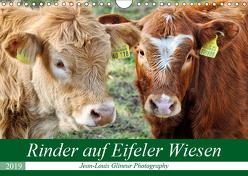 Rinder auf Eifeler Wiesen (Wandkalender 2019 DIN A4 quer) von Glineur,  Jean-Louis