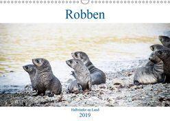 Robben – Halbstarke an Land (Wandkalender 2019 DIN A3 quer) von Siegl aka THE DUN DOG,  Nadja
