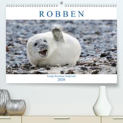Robben – Lustige Bewohner Helgolands (Premium, hochwertiger DIN A2 Wandkalender 2020, Kunstdruck in Hochglanz) von Orth,  Egid