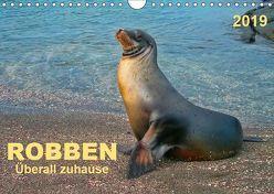 Robben – überall zuhause (Wandkalender 2019 DIN A4 quer) von Roder,  Peter