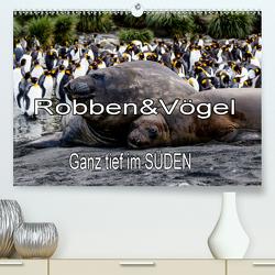 Robben & Vögel – Ganz tief im SÜDEN (Premium, hochwertiger DIN A2 Wandkalender 2020, Kunstdruck in Hochglanz) von Baumert,  Frank