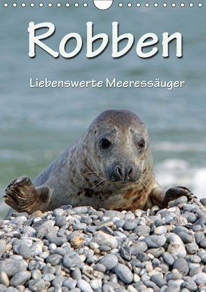 Robben (Wandkalender 2018 DIN A4 hoch) von Berg,  Martina