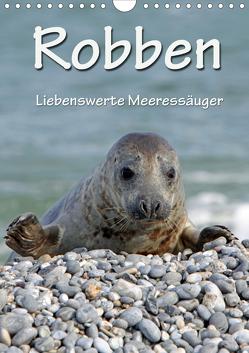 Robben (Wandkalender 2020 DIN A4 hoch) von Berg,  Martina