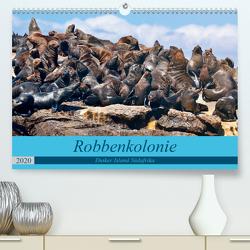 Robbenkolonie Duiker Island Südafrika (Premium, hochwertiger DIN A2 Wandkalender 2020, Kunstdruck in Hochglanz) von www.kult-fotos.de