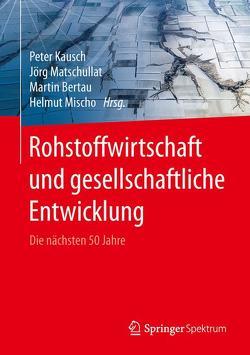 Rohstoffwirtschaft und gesellschaftliche Entwicklung von Bertau,  Martin, Kausch,  Peter, Matschullat,  Jörg, Mischo,  Helmut