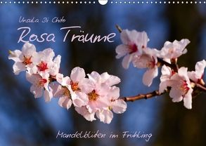 Rosa Träume – Mandelblüten im Frühling (Wandkalender 2018 DIN A3 quer) von Di Chito,  Ursula
