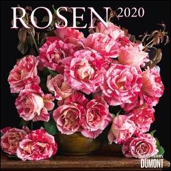 Rosen 2020 – Broschürenkalender – Format 30 x 30 cm von DUMONT Kalenderverlag, Perry,  Clay