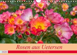 Rosen aus Uetersen (Wandkalender 2020 DIN A4 quer) von Steiner / Matthias Konrad,  Carmen