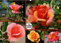 ROSEN – edel – elegant – verführerisch (Wandkalender 2019 DIN A2 quer) von GUGIGEI