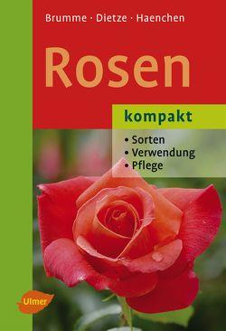 Rosen kompakt von Brumme,  Hella, Dietze,  Peter, Haenchen,  Eckart