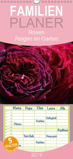 Rosen Reigen im Garten – Familienplaner hoch (Wandkalender 2019 , 21 cm x 45 cm, hoch) von Cross,  Martina
