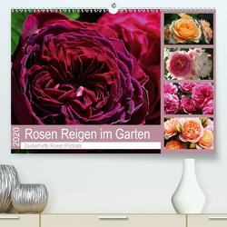 Rosen Reigen im Garten (Premium, hochwertiger DIN A2 Wandkalender 2020, Kunstdruck in Hochglanz) von Cross,  Martina