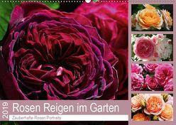 Rosen Reigen im Garten (Wandkalender 2019 DIN A2 quer) von Cross,  Martina