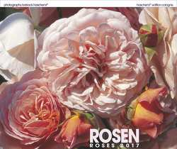 Rosen – Roses 2018 von Haschemi,  Baback